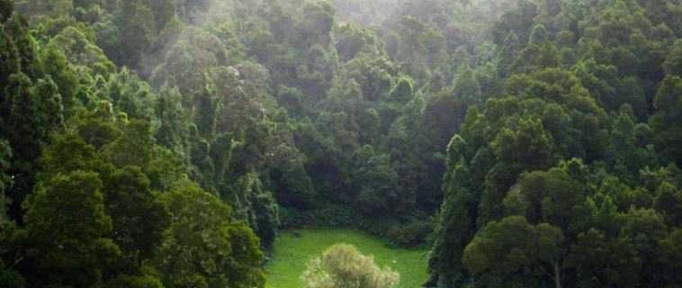 Turisme sostenible: cap a un viatge just