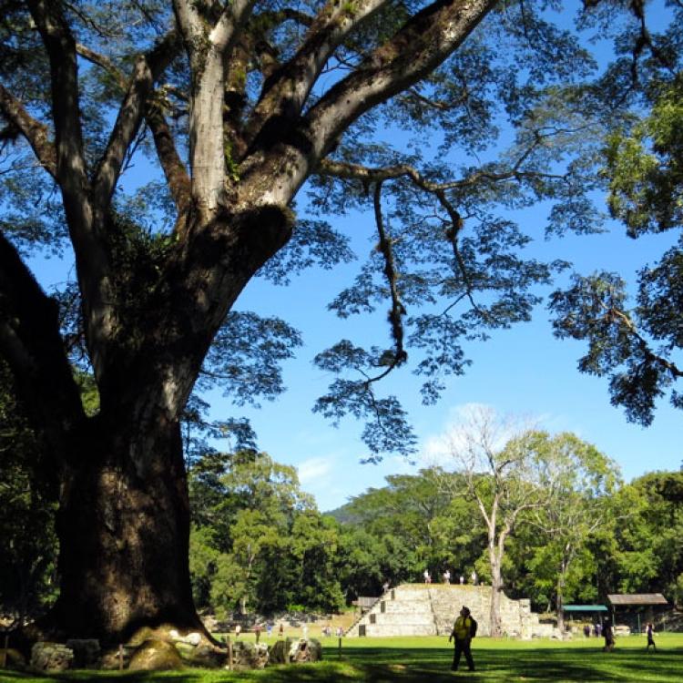 Hondures - Nadiu Viatges