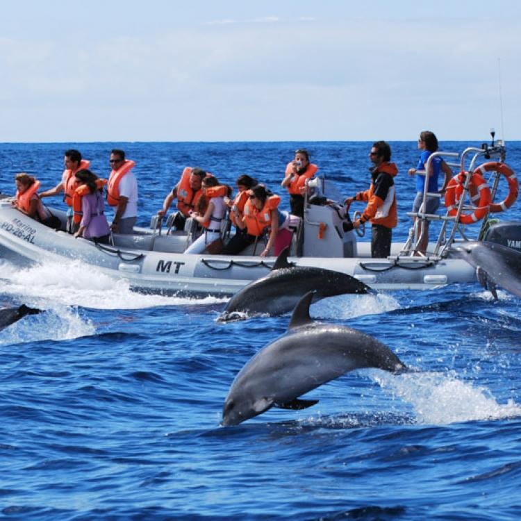 viaje azores nadiu viatges turismo responsable