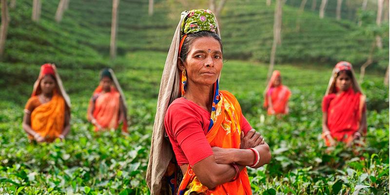 Viaje a la India - Nadiu Viatges