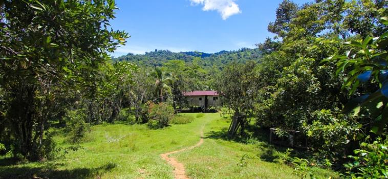 Un viatge als orígens de Costa Rica
