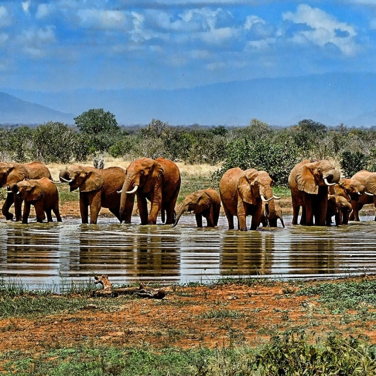 Viatge a Sud-àfrica Nadiu Viatges Turismo Responsable