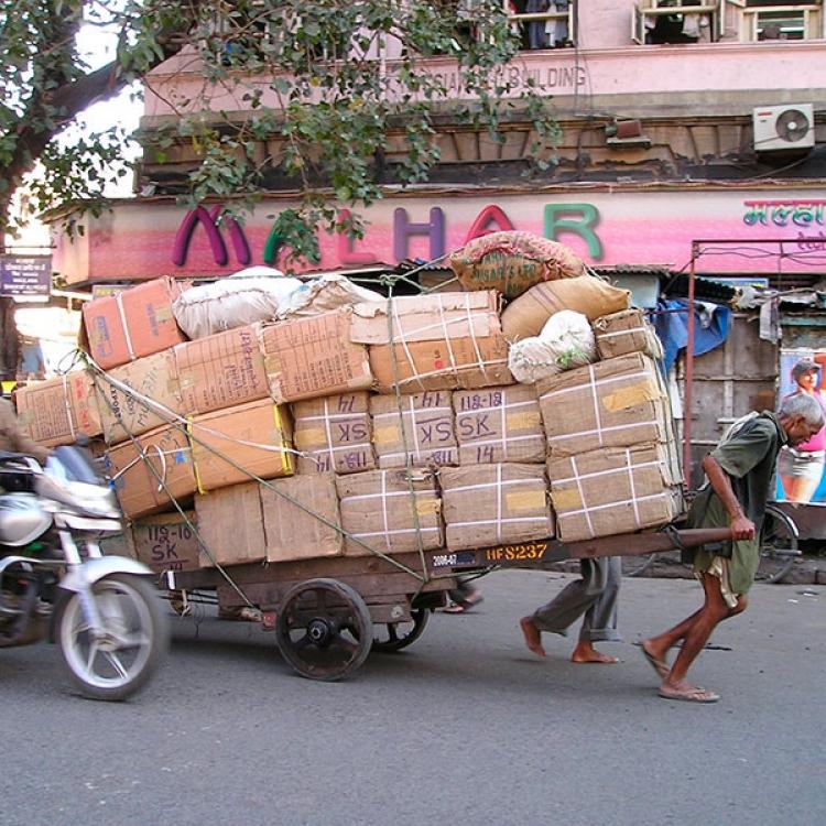 Índia - Nadiu viatges