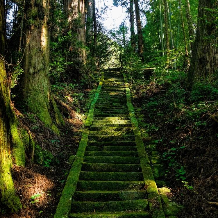 Viatge al Japó Nadiu Viatges Turismo Responsable