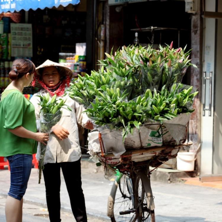 Viatge Vietnam Nadiu Viatges Turisme Responsable